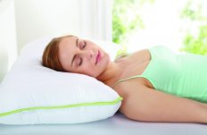 Malta, Aloe Vera Pillow - Buy one, get the second pillow half price! Malta, Products Malta, Dolphin Pools Limited Malta